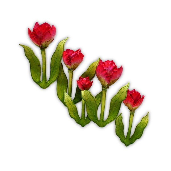 3D Tulip Shaping Mold
