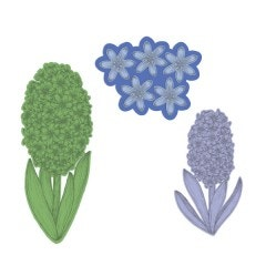 Fragrant Hyacinth Die