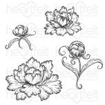 Peony Bud and Blossom Cling Stamp Set