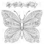 Large Floral Butterfly Cling Stamp Set