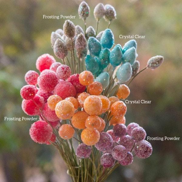 Rajni Chawla's Frosting Powder