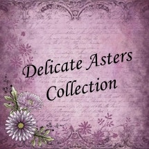 Delicate Asters Collection