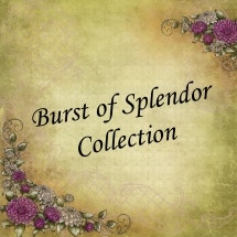 Burst of Splendor Collection
