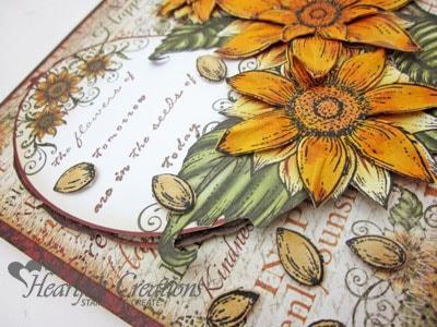 Sunflowers Tomorrow