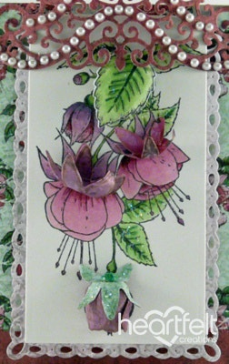 Pink Fuchsia Step Card