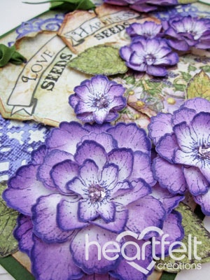 Purple Blooms With Tags