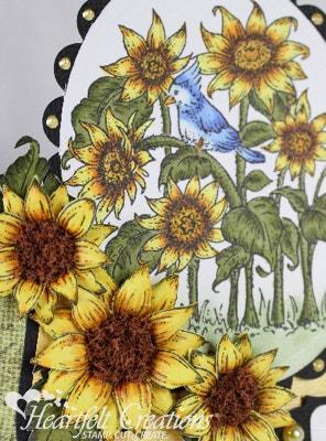 Sunflower Garden Birthday