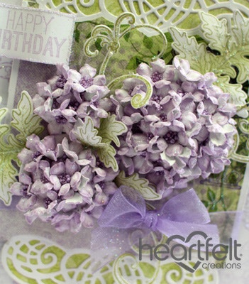 Hydrangea Birthday Blooms