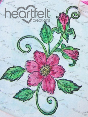 Pink Botanical Rose Bouquet