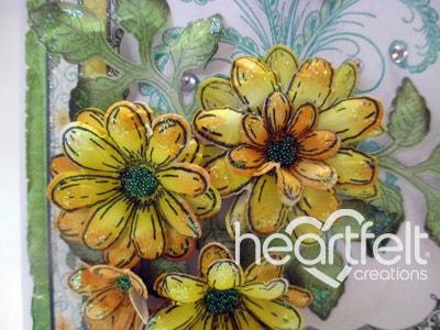 Yellow Daisy Flourish