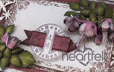Fuchsia Best Wishes