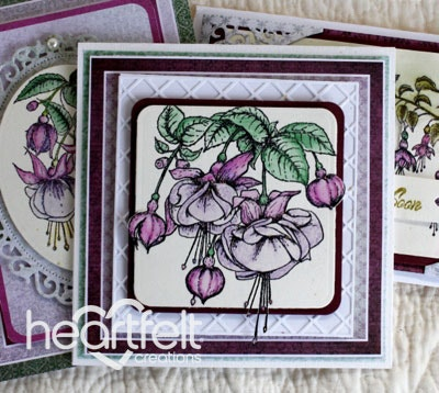 Fuchsia Gift Card Set