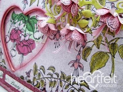 Pink Fuchsia Decorative Frame