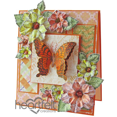 Orange Butterfly And Blooms