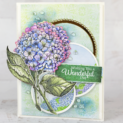 Wonderful Hydrangea Wishes
