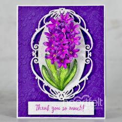 Appreciate Hyacinth