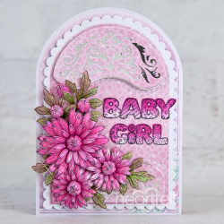 Baby Girl Scallops