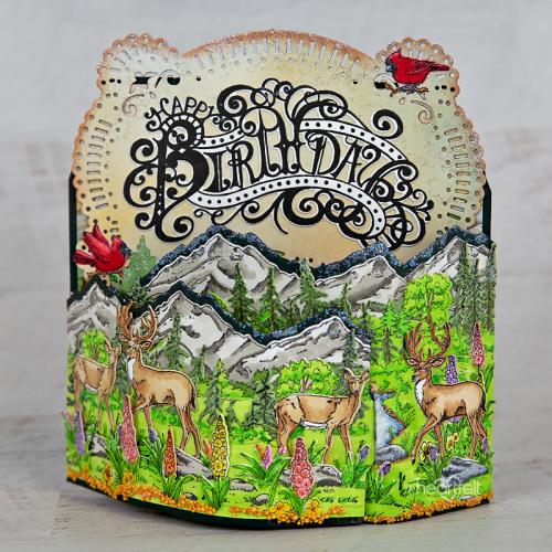Backcountry Happy Birthday
