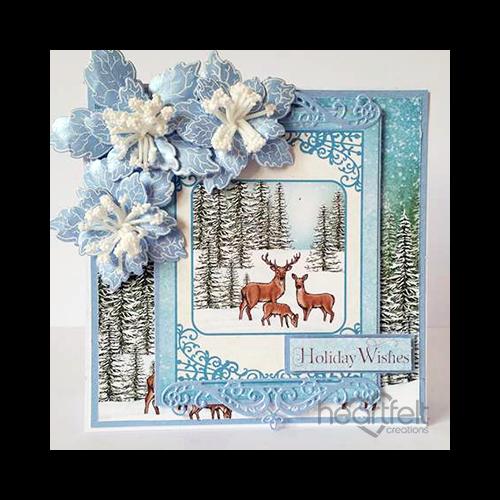 Blue Winter Poinsettias
