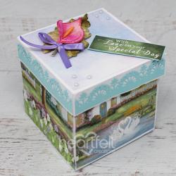 Boxed Calla Lilies