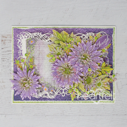Cherished Asters Booklet
