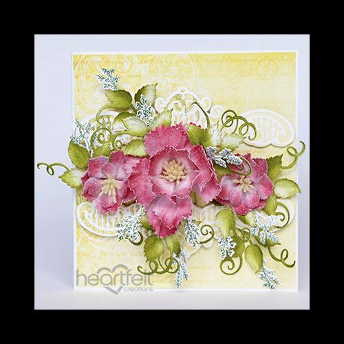Coronation Blooms