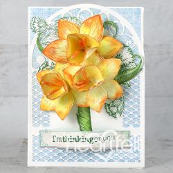 Daffodil Teardrop