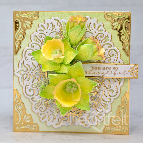 Daffodils Edged in Gold