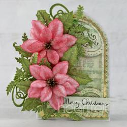 Festive Pink Poinsettia