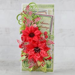 Festive Red Poinsettia
