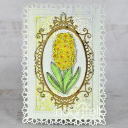 Framed Hyacinth