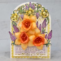 Gifting Daffodils