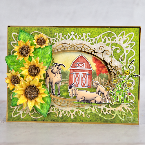 Goats and Sunflowers