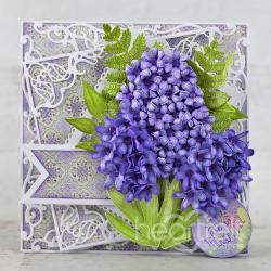 Hyacinth Hue
