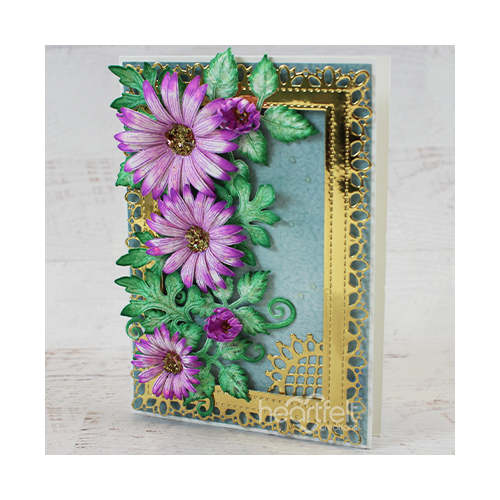 Intricately Encased Asters