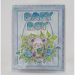 Koala Floral