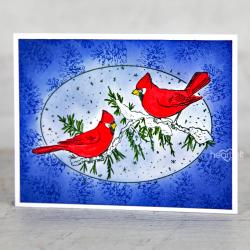 Masked Cardinals