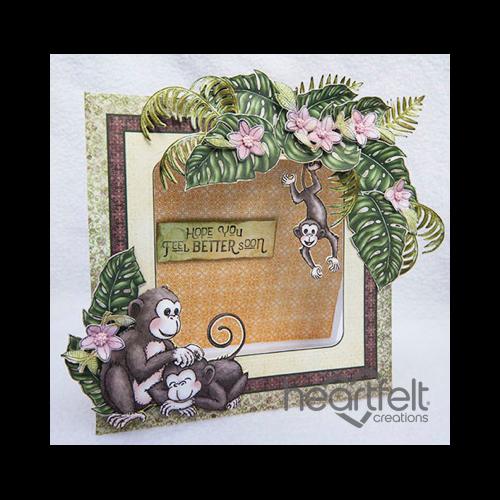 Monkey Get Well Frame Card