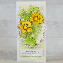 Ornate Daffodil