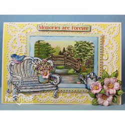 Picturesque Memories