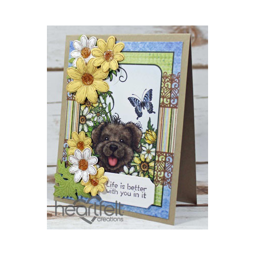 Pooch Face And Daisies