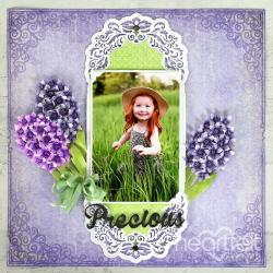 Precious Hyacinths