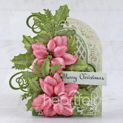 Pretty in Pink Poinsettia