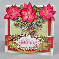 Pretty Poinsettias and Pine Cones