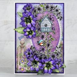 Pretty Purple Clematis