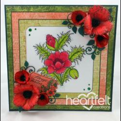 Red Blazing Poppies