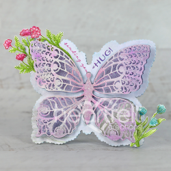 Sending Butterfly Hugs
