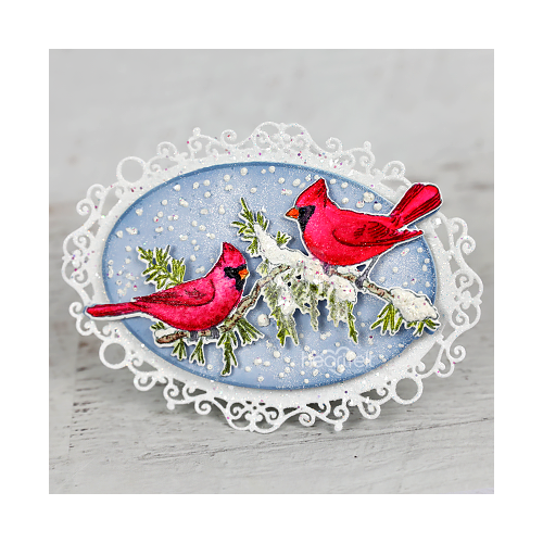 Snowy Scarlet Songbirds