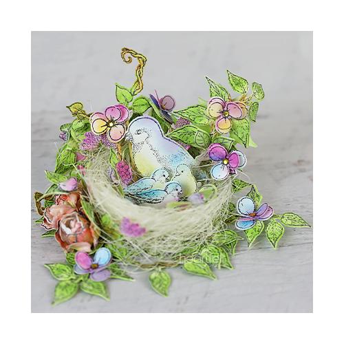 Songbirds' Nest