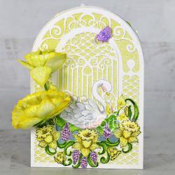 Swan Song Daffodils